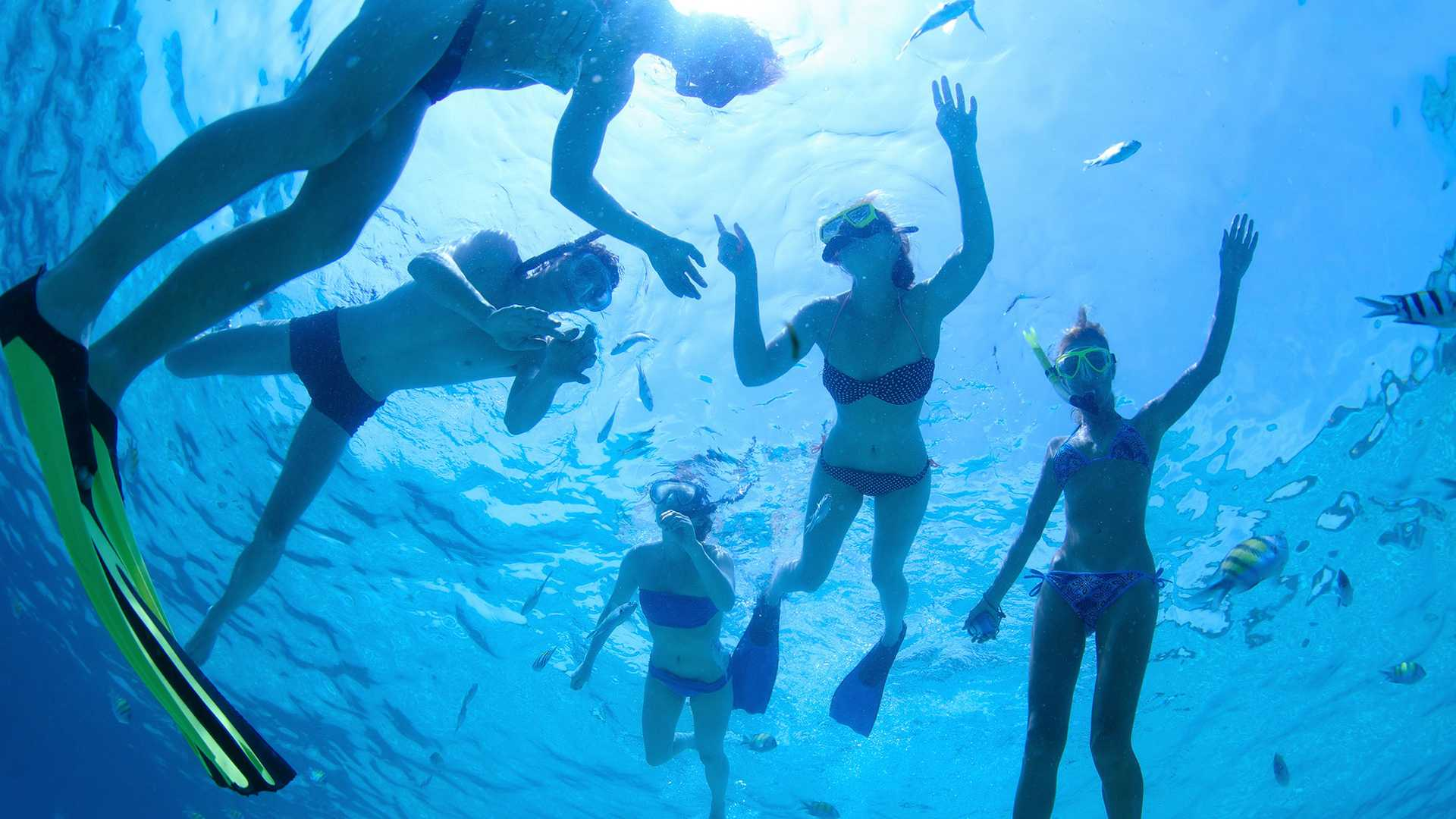 Phuket Snorkeling tours Phi Phi Islands day trips.
